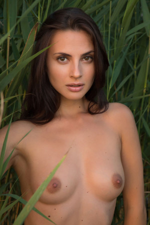 Jasmine 9393