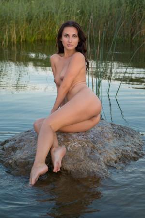Jasmine 9398