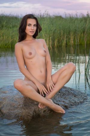 Jasmine 9399